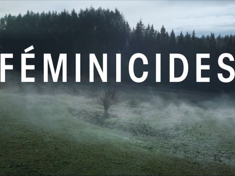 Féminicides et La Maison des hommes violents, deux documentaires édifiants en vidéo à la demande