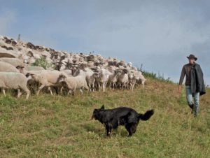 Saisonniers : la voie de l'exode